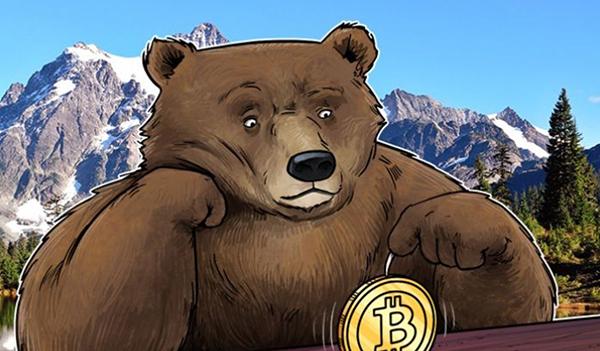 Crypto Bear