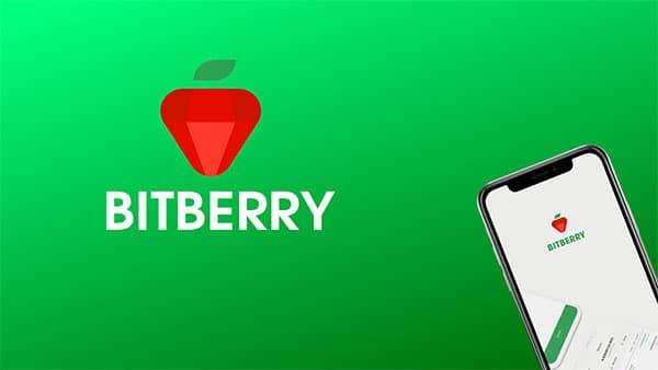 BitBerry