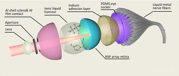 Bionica Eye
