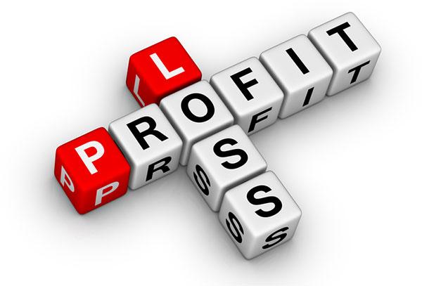 ProfitLoss