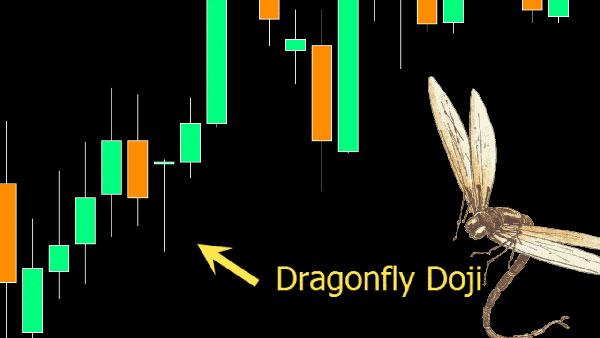 DragonflyDoji